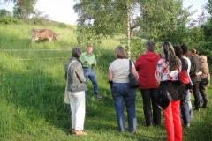 Besuch auf dem Chripfelihof 2013
